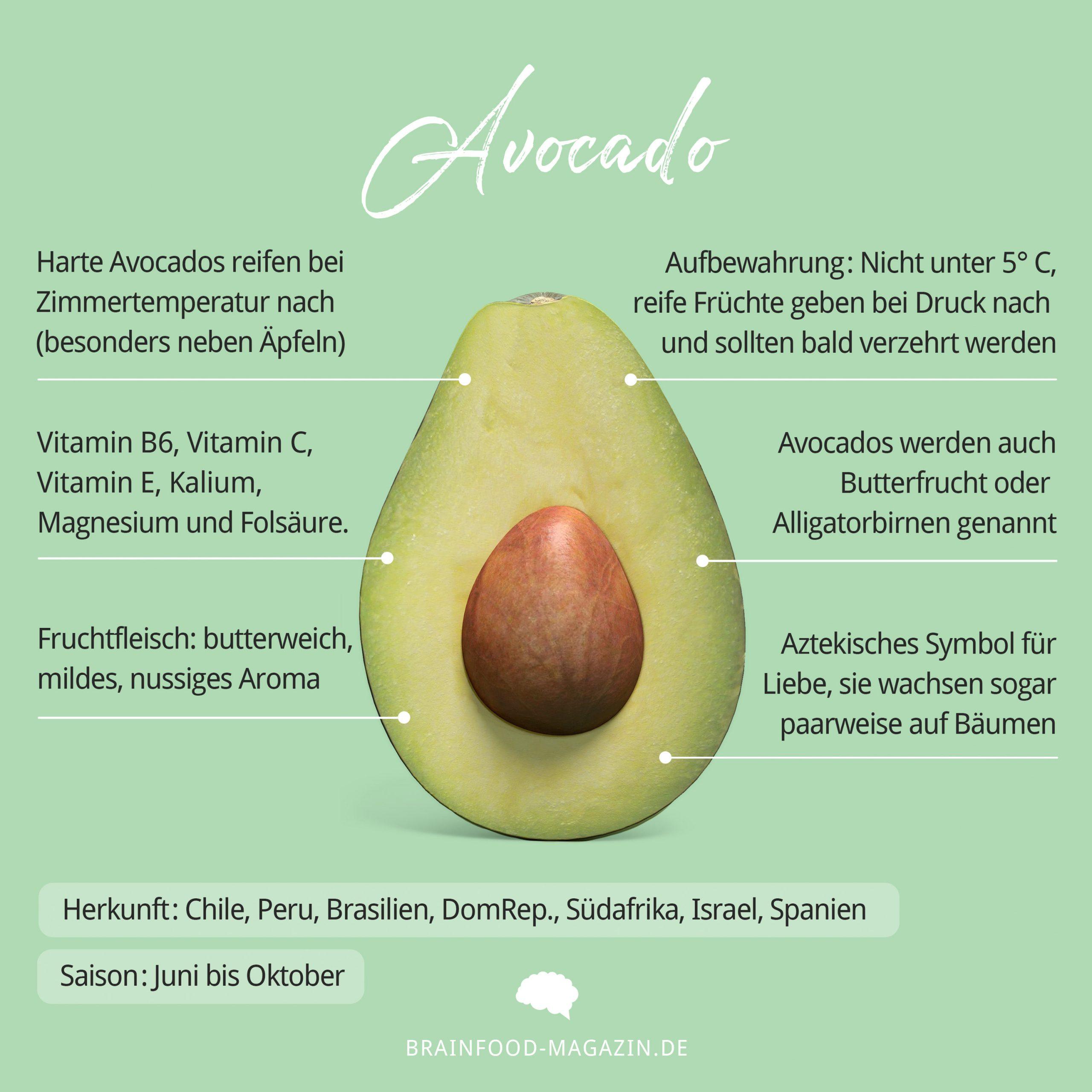 Avocado Herkunft, Haltbarkeit, Aufbewahrung und Rezepte. Wie gesund ist die Avocado?