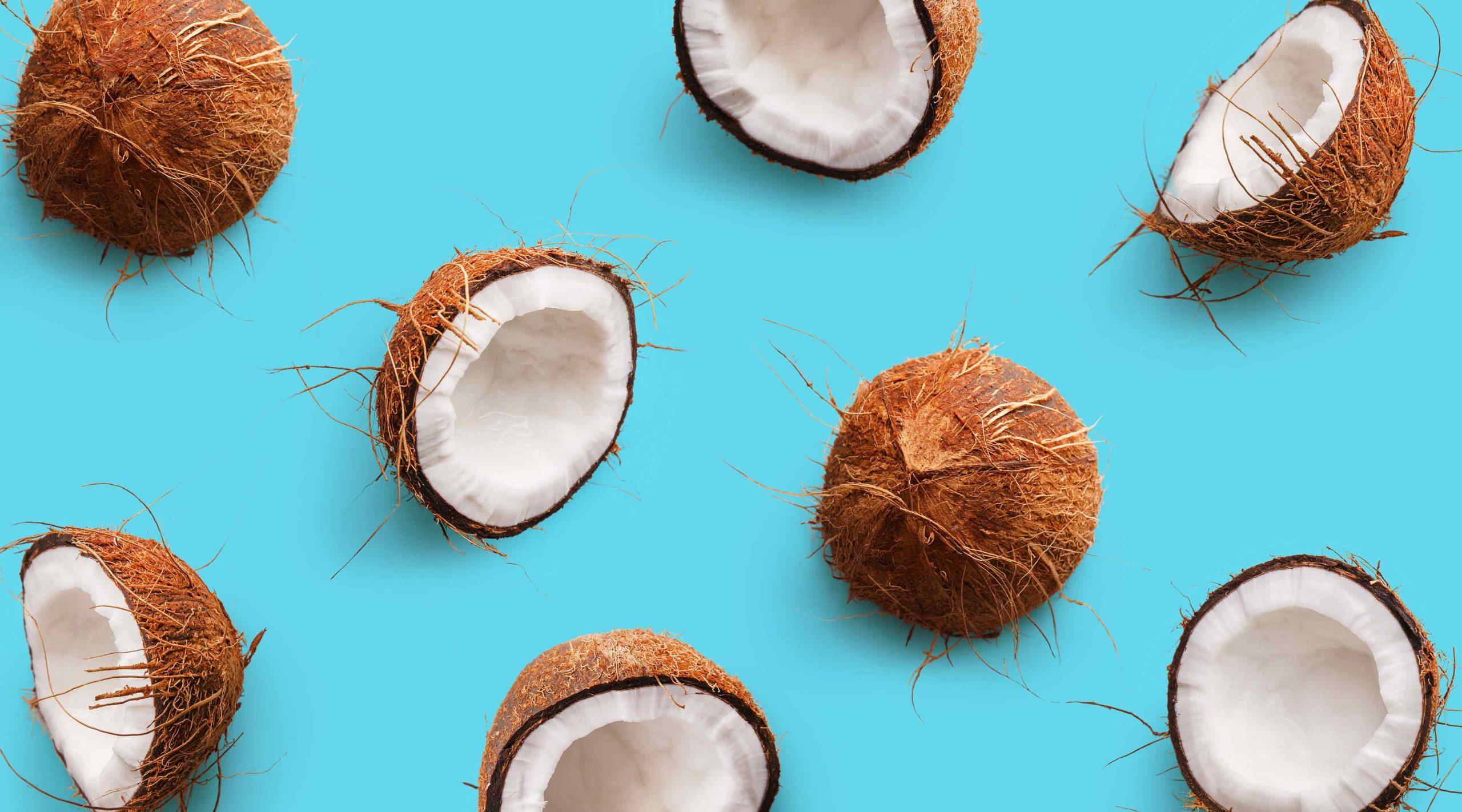 Echtes Brainfood Kokosnüsse
