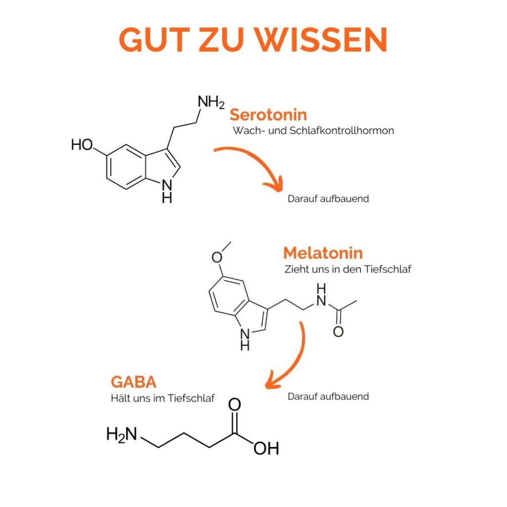 Serotalin Kapseln. Wissen über Serotonin, Melatonin und Gaba. Serotonin ist wichtig für die Entwicklung von Schlafhormonen.