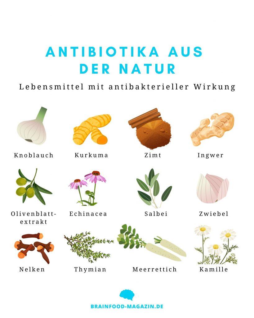 12 Antibiotika aus der Natur
